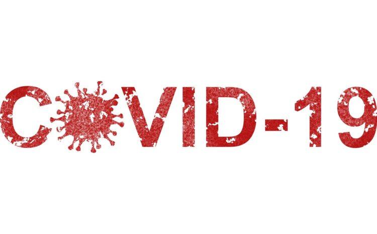 Факты о коронавирусной инфекции (Covid 19)